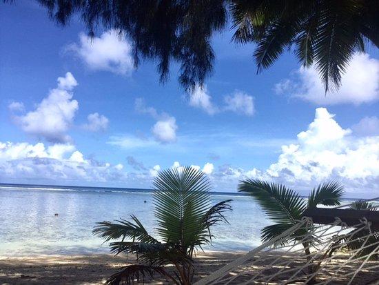 Sunhaven Beach Bungalows: View from the hammock on the Sunhaven beach