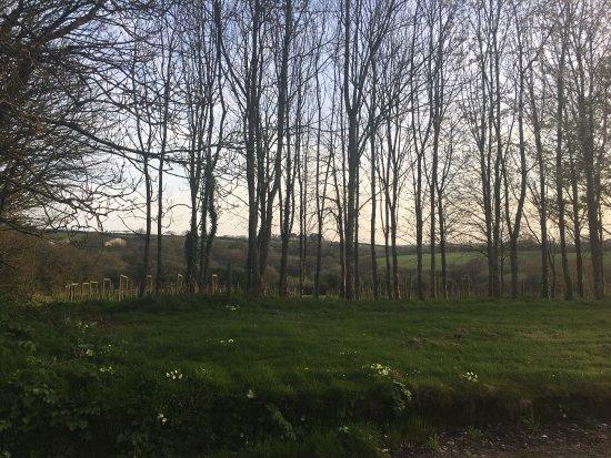 Saint Ewe, UK: photo0.jpg