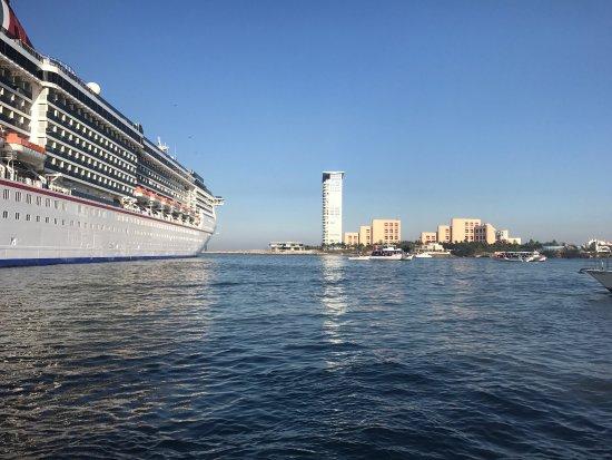 Crucero Bahía Alegre: photo6.jpg