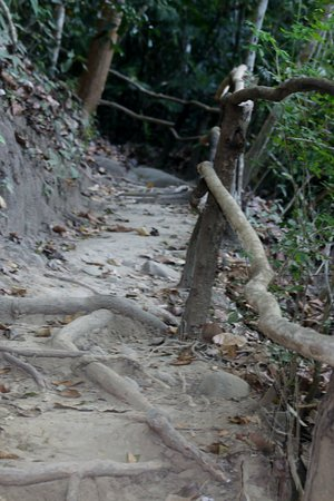 Nicoya, Kosta Rika: the rough walkway on oneo trail