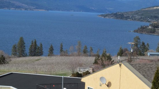Winfield, Canada: Northwest view of Okanagan Lake from the winery retail upper deck.