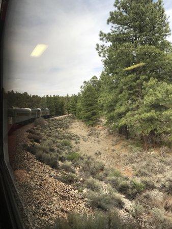 Williams, AZ: photo2.jpg