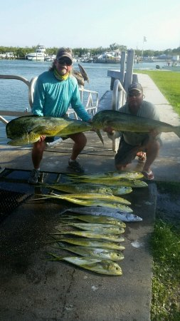 Enjoying the treasure coast picture of sea shift fishing for Fishing charters fort pierce fl