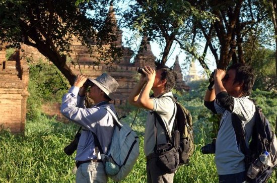 Bagan Temples and Nature Day Trip with