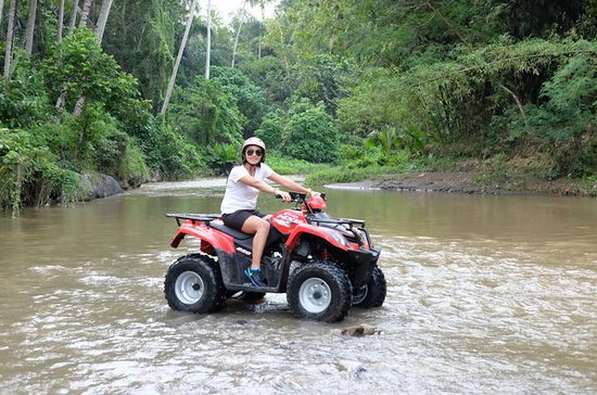 Full-Day Quad Bike Adventure Tour in...