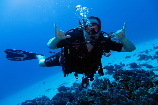 Can't go wrong with Makena Coast Dive Charters!