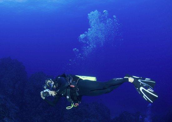 Makena Coast Dive Charters: Author, Photo by Benja Iglesis, Professional Photographer, 115' Pinnacles