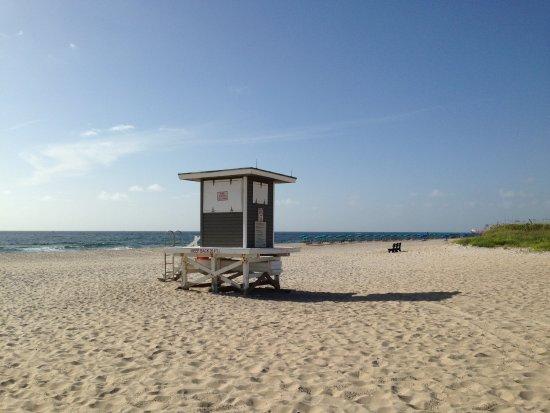Sunshine Shores Resort: Local Beach