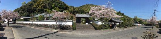 Saiki, Japonia: 春爛漫!