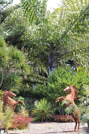 Lanscaping with unusual palms and with figurines