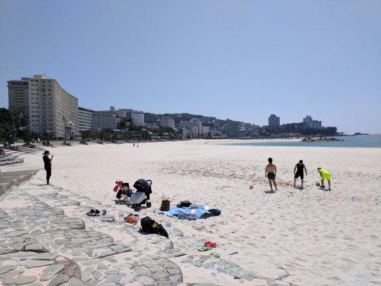 Shirahama Beach: IMG_20170413_133147_large.jpg