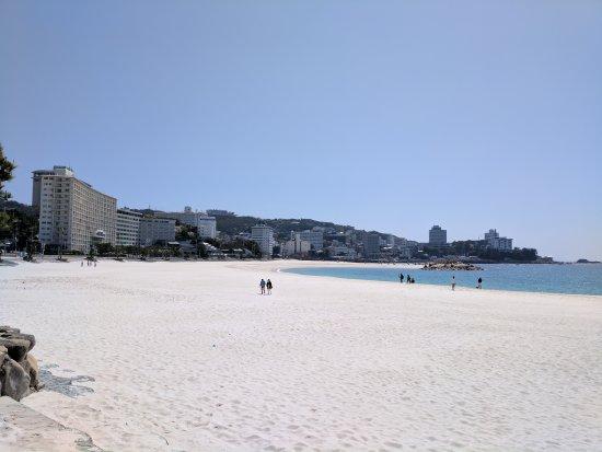 Shirahama Beach: IMG_20170413_132623_large.jpg
