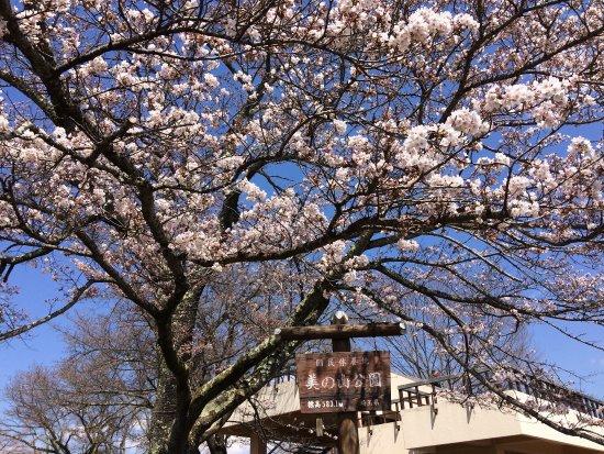 Fotografia de Minano-machi