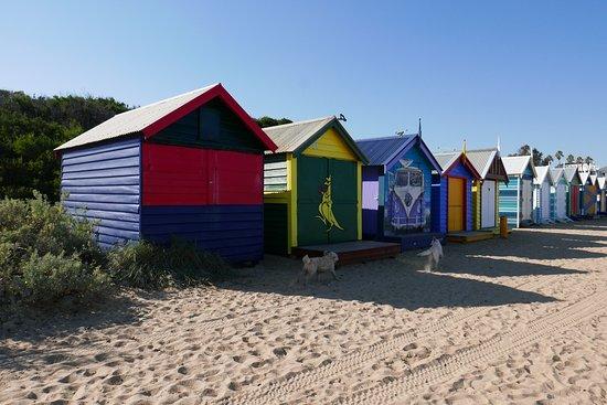 Beach houses at Brighton Beach