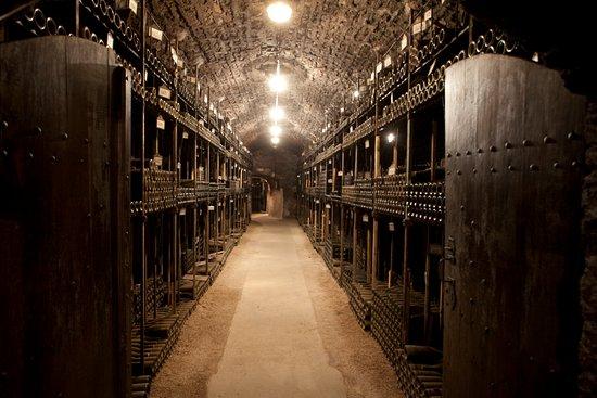 Bouchard Père & Fils : Les caves du Château de Beaune /  The cellars of the Château de Beaune
