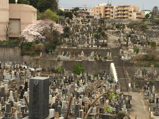 Yokohama Kuboyama Cemetery