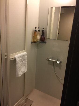 Dormy Inn Premium Kyoto Ekimae: Standing shower. Good water flow. Toiletries are very of good quality and brand too!