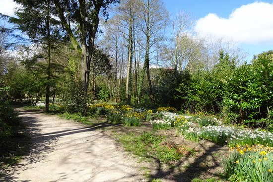 St Austell, UK: Woodland walks...