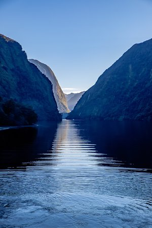 Doubtful Sound Wilderness Day Cruises – Real Journeys: photo7.jpg