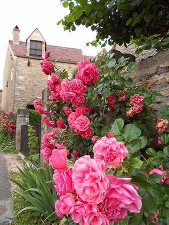 Chateauneuf, France: Les rosiers en fleurs