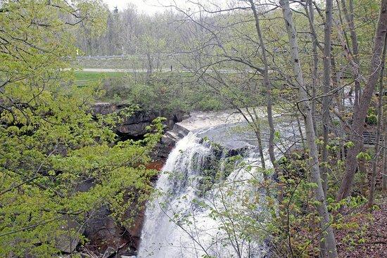 Sagamore Hills, OH: Brandywine Falls in spring