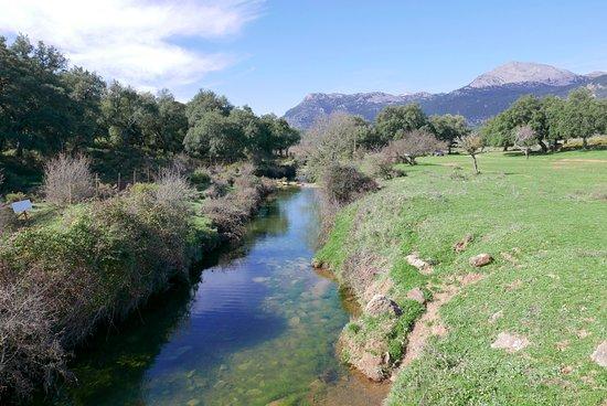 Sierra de Grazalema Natural Park, Espagne : River just down from hotel