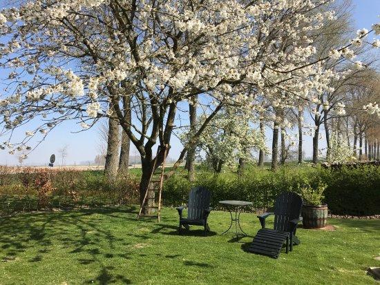 Sint-Laureins, Bélgica: Mooie tuin rondom het huis