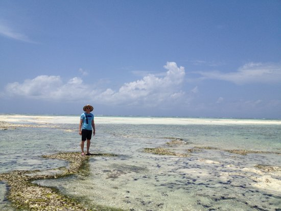 Essque Zalu Zanzibar: exploring the beach at low tide