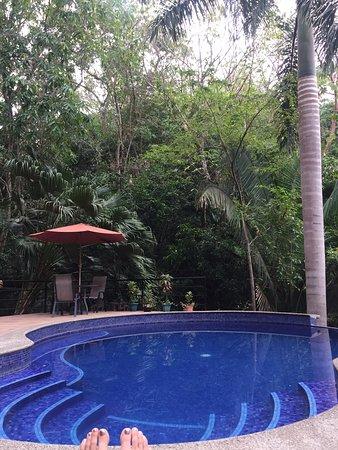 Jungle Vista Inn: Private Pool in the Jungle