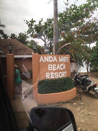 Anda White Beach Resort: photo7.jpg
