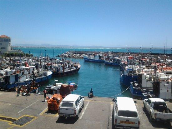Port St Francis, Südafrika: Chokka boats in working harbour