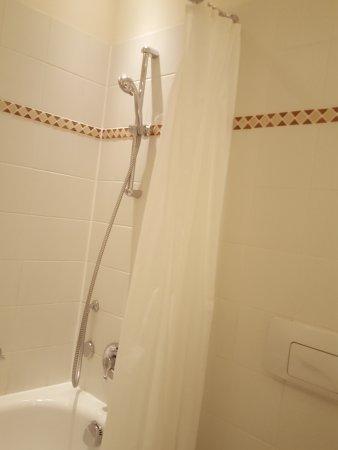 Hotel Elbflorenz Dresden: Duschvorhang?!