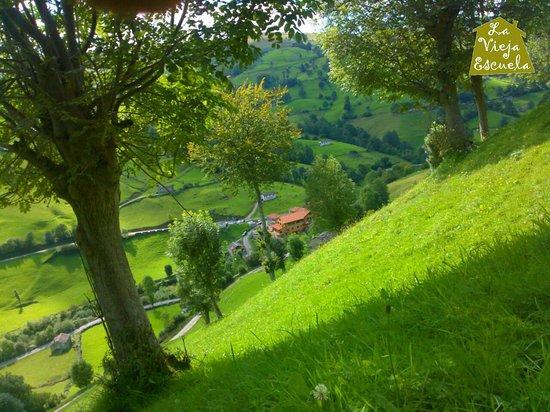 En la ladera de Los Valles Pasiegos con Posada La Vieja Escuela.