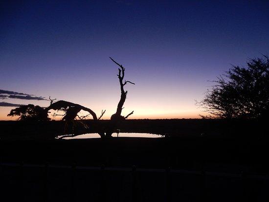 Okaukuejo Rest Camp: Aussicht aus dem Waterhole Chalet