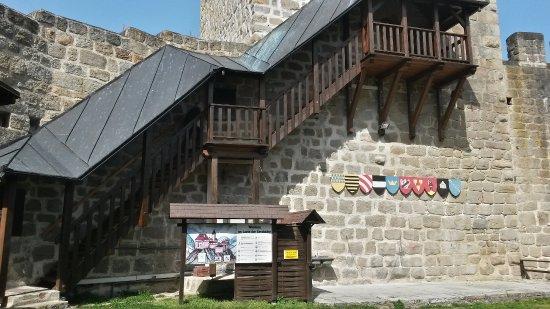 Burgruine Windegg
