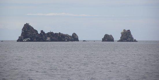 Floreana, Ecuador: Devils Crown, Galapagos