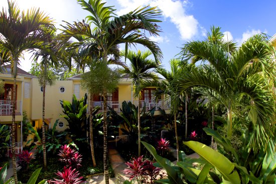 Negril Palms Hotel: Our tropical paradise.