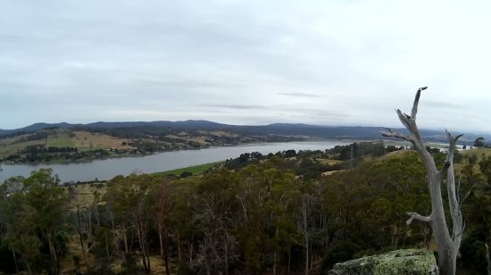 Rosevears, Australia: VIEW OF OUTLOOK