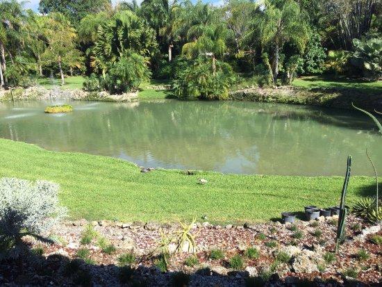 Pinecrest Gardens: photo1.jpg