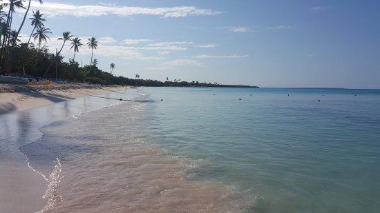 Bayahíbe, República Dominicana: 20170329_084432_large.jpg