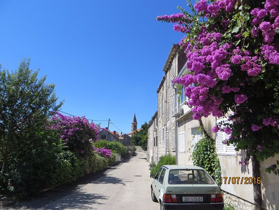 Gric Bed and Breakfast: Trpanj