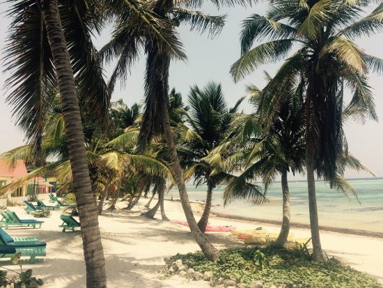 Tranquility Bay Resort: photo0.jpg