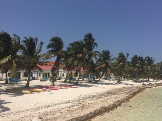 Tranquility Bay Resort: photo2.jpg