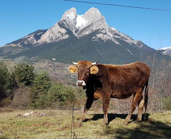 Saldes, España: 20170403_154535_large.jpg