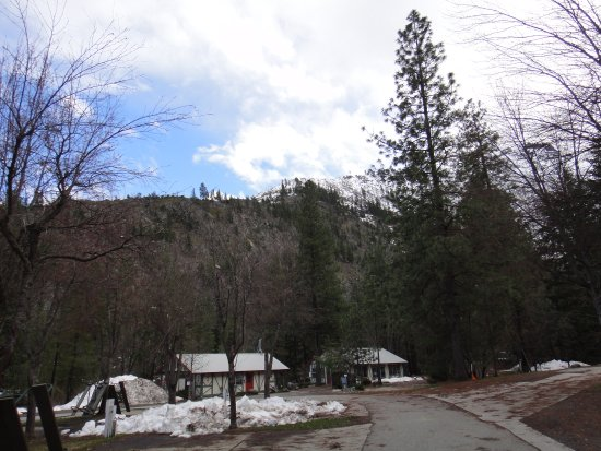 Icicle River RV Resort: Campsite