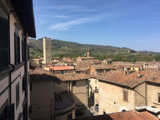 Citta di Castello, إيطاليا: Museo Malacologico Malakos