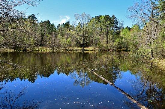 Horton Grove Nature Preserve