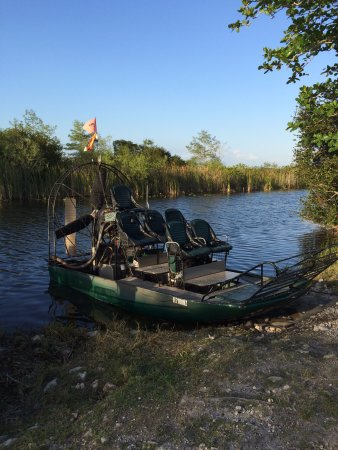 Everglades Pontoon Boat Tour