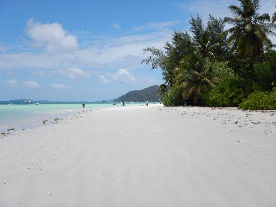Pirogue Lodge : Spiaggia di Anse Volbert
