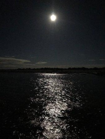 Hamelin Pool, Australie : photo1.jpg
